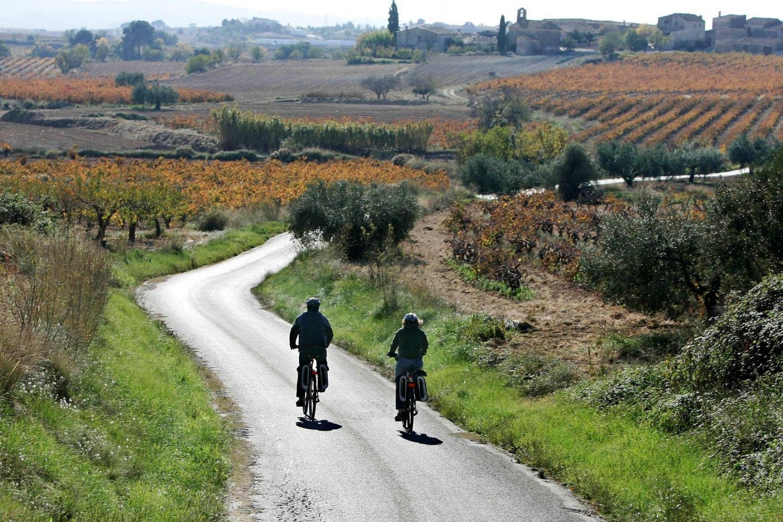 Barcelona Bike Tour in Wine Country