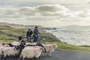 Ireland - Bike Tour on the Wild Atlantic Way Thumbnail
