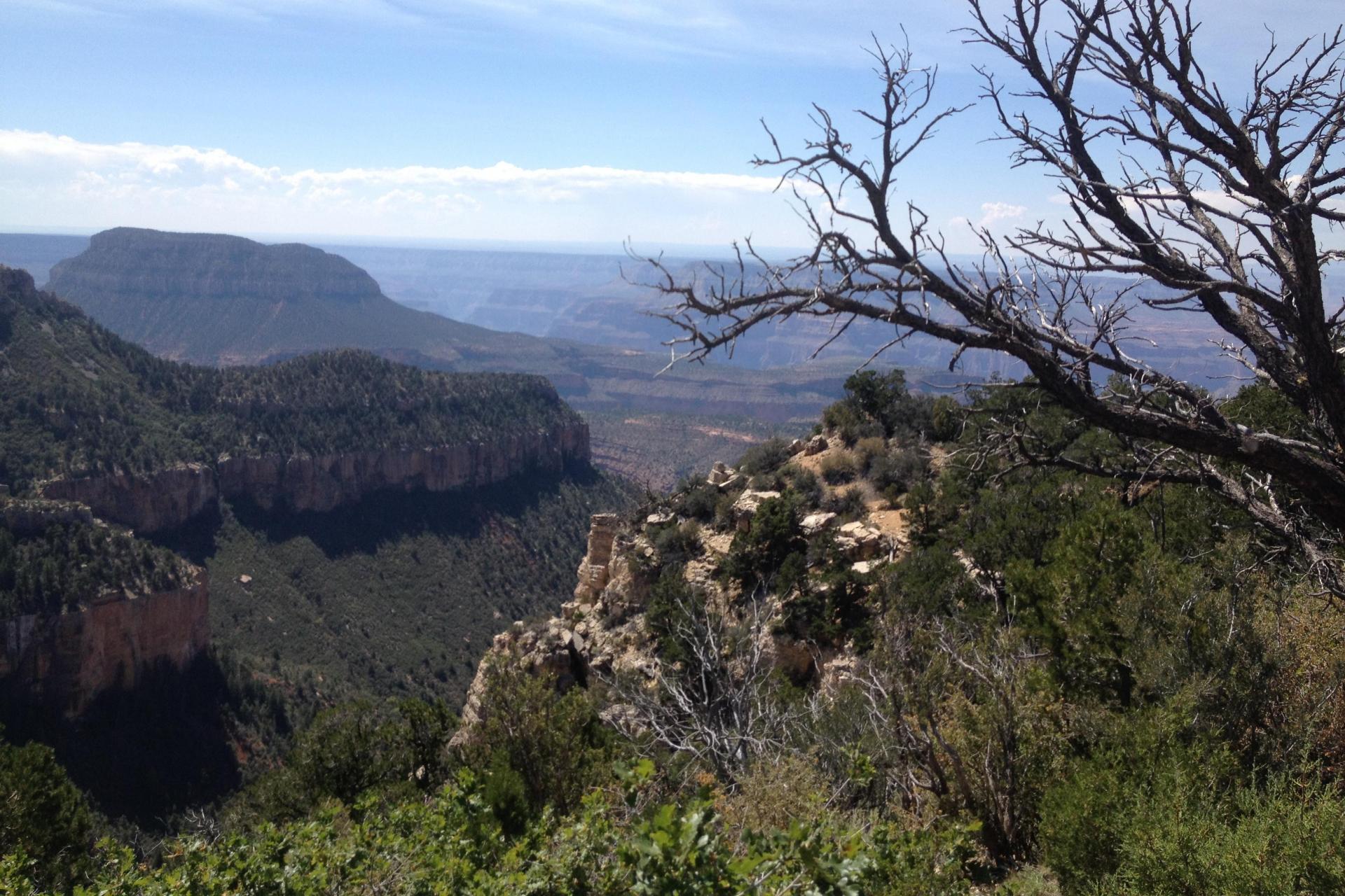 Mountain bike tour Grand Canyon AZT
