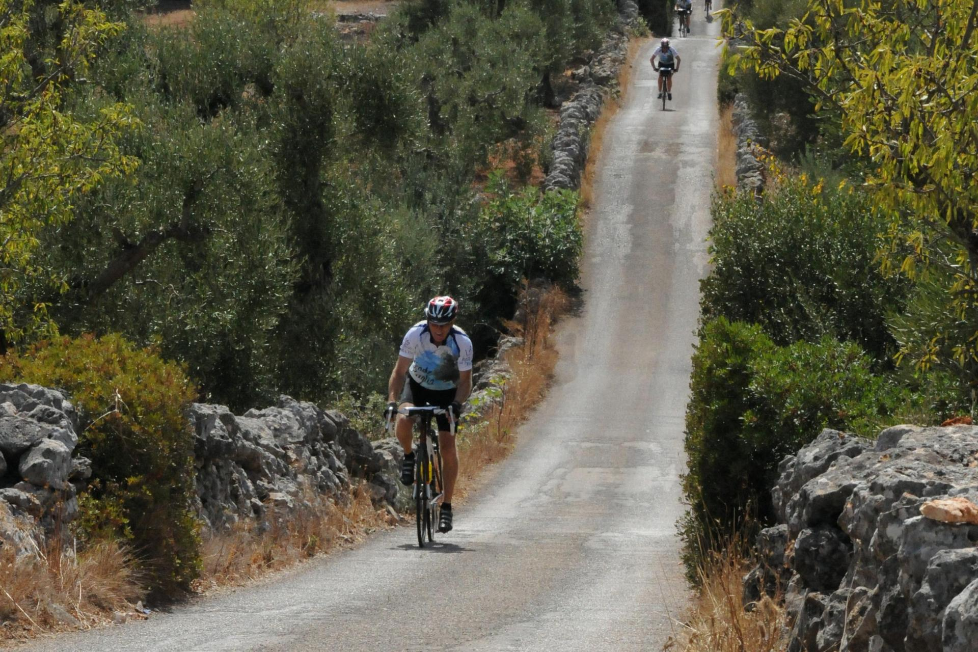 Cycling Tours self guided Puglia Italy