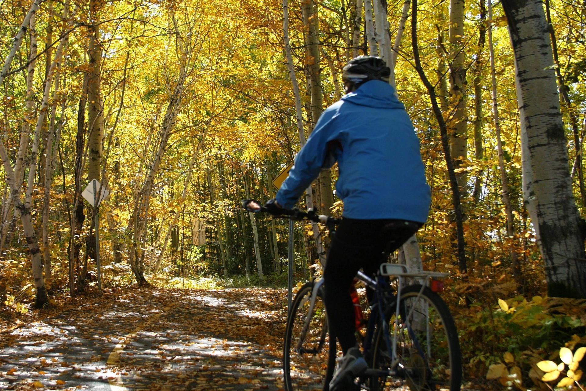 Bike Tour Quebec Canada Veloroute des Bluets