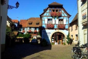 France - Alsace Wine Route Bike Tour Thumbnail