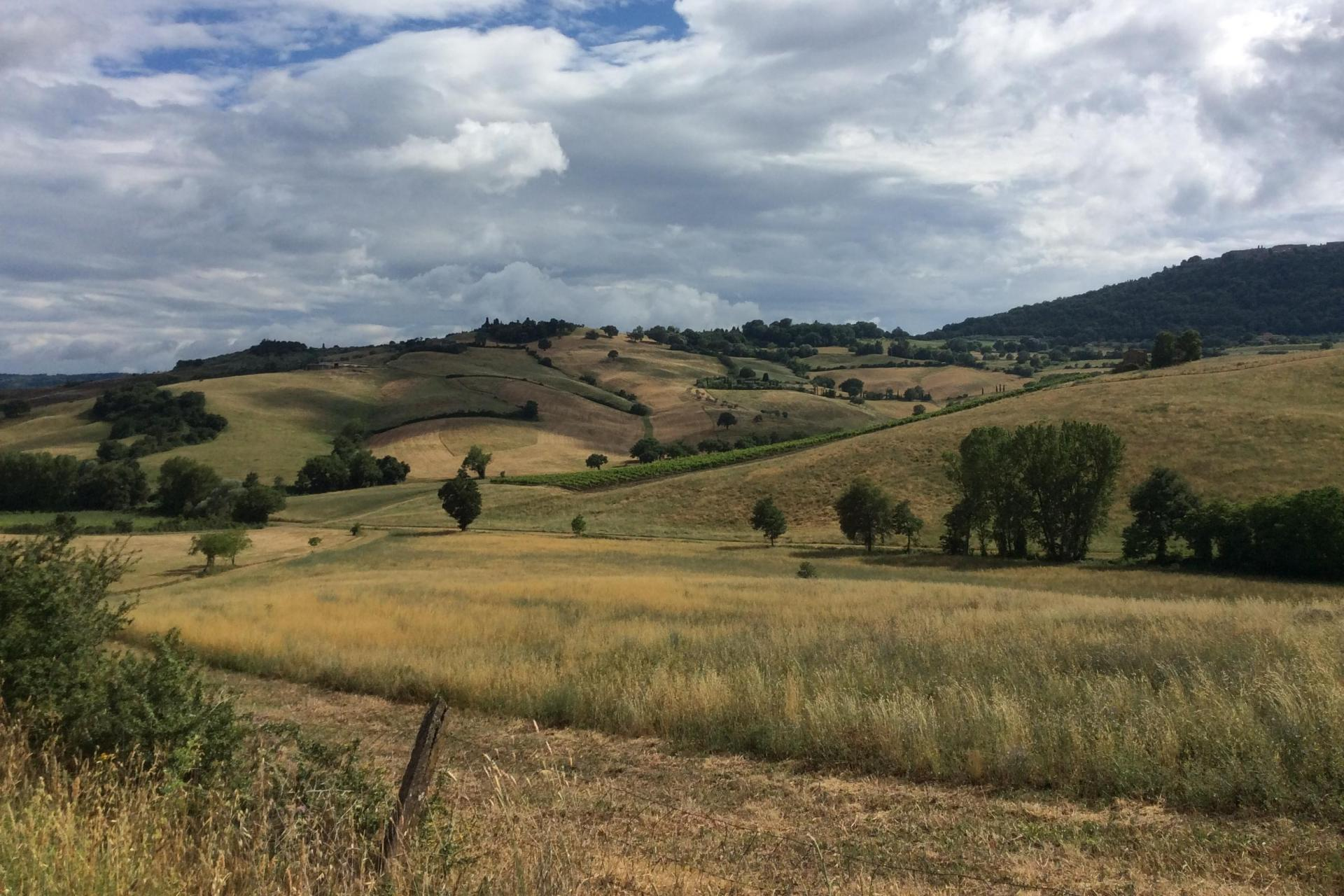 Tuscany Foodie Adventure Tour