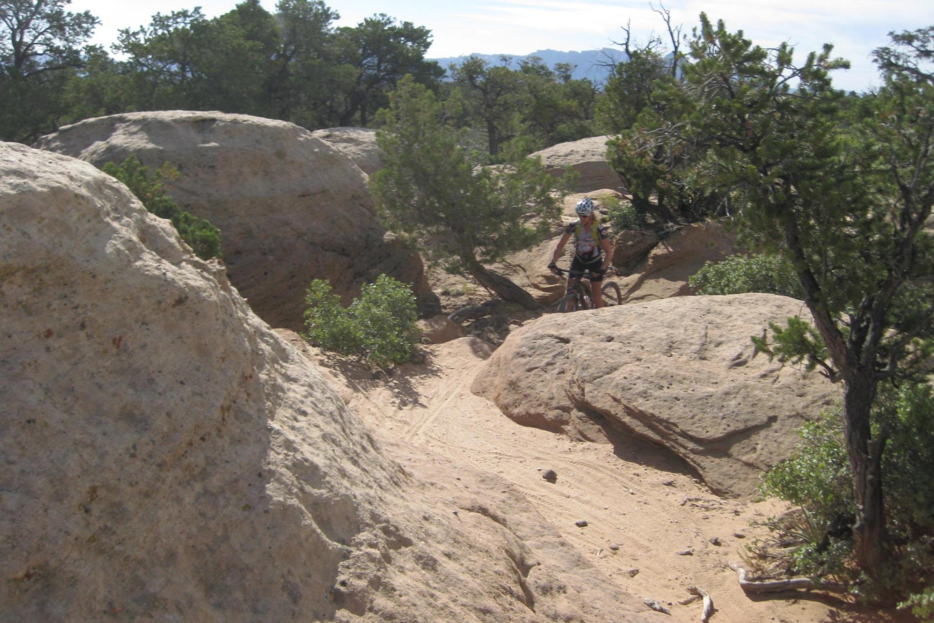 Gooseberry Mesa and Jem Trail MTB Tour Utah