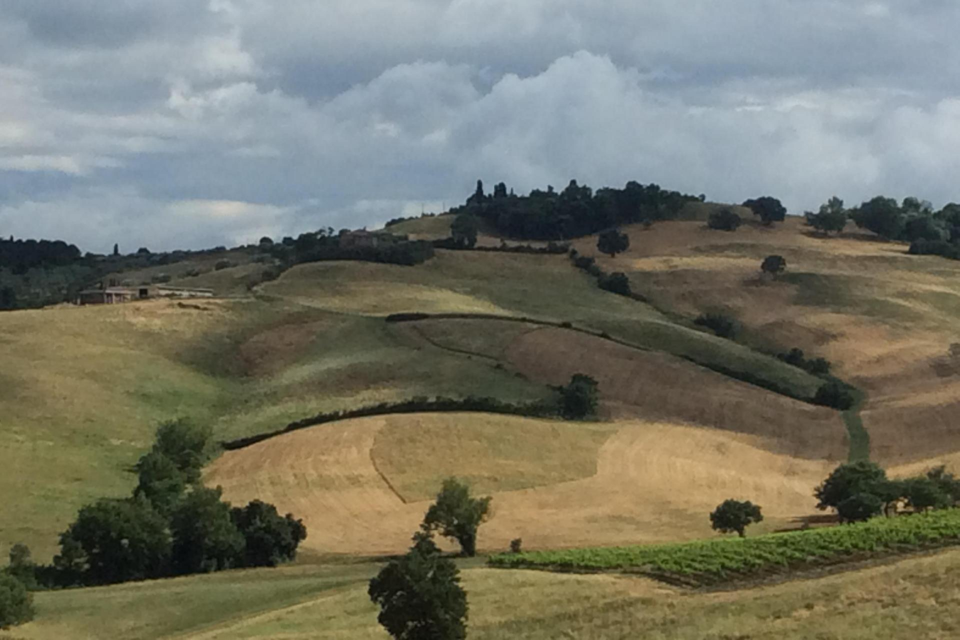 Tuscany cycling tour from Pienza to Siena biking