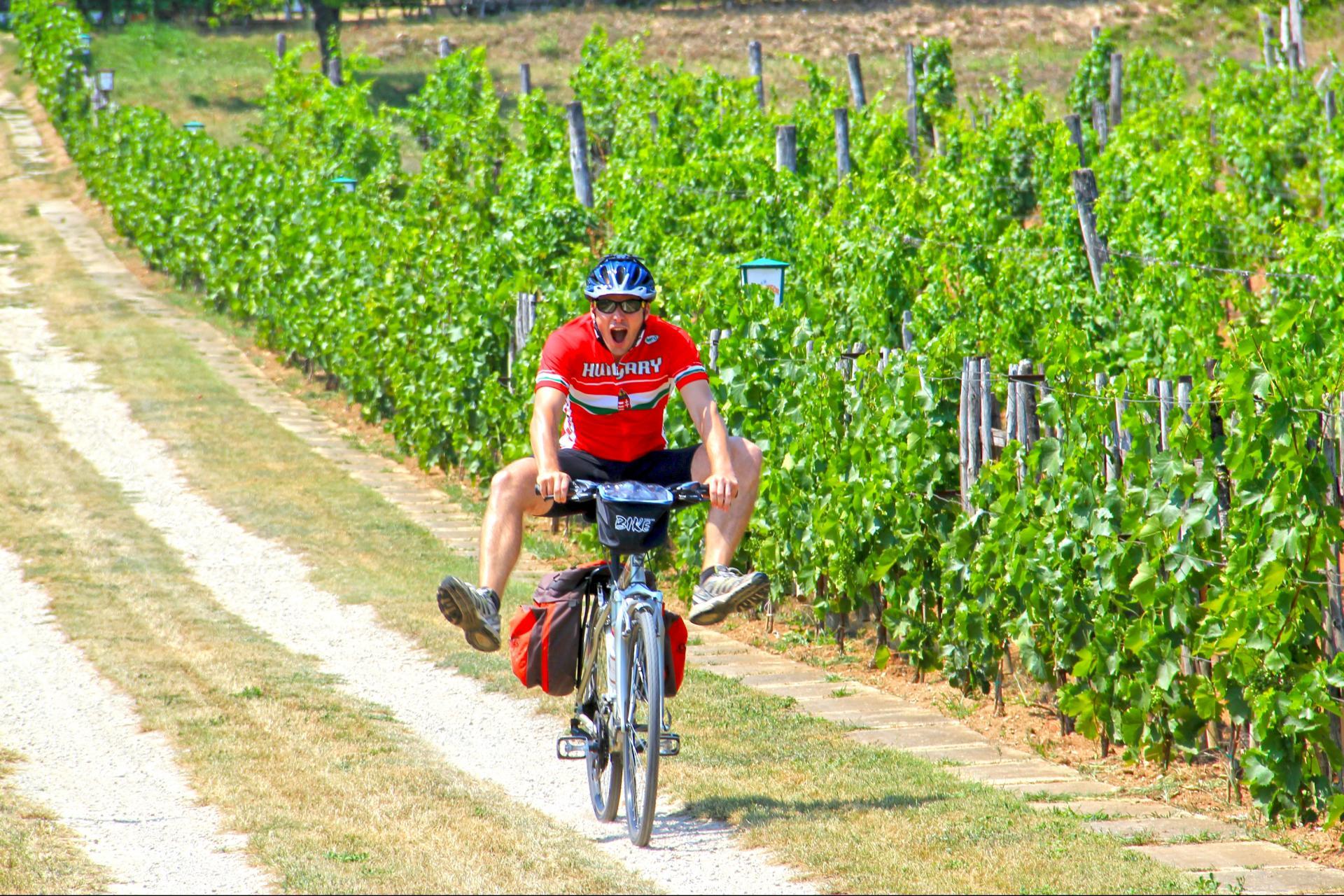 self guided Hungary bike and wine tour