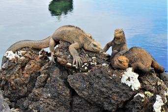 Ecuador - Galapagos Islands Multisport Tour Thumbnail