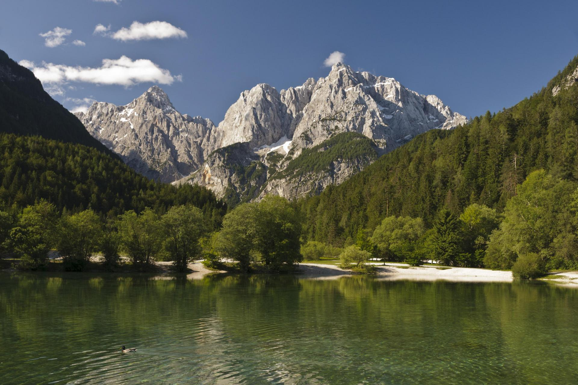 Slovenia bicycle tour to discover Pure Slovenia best cycling!