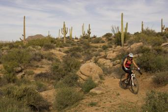 Arizona Desert Mountain Bike Tour Thumbnail