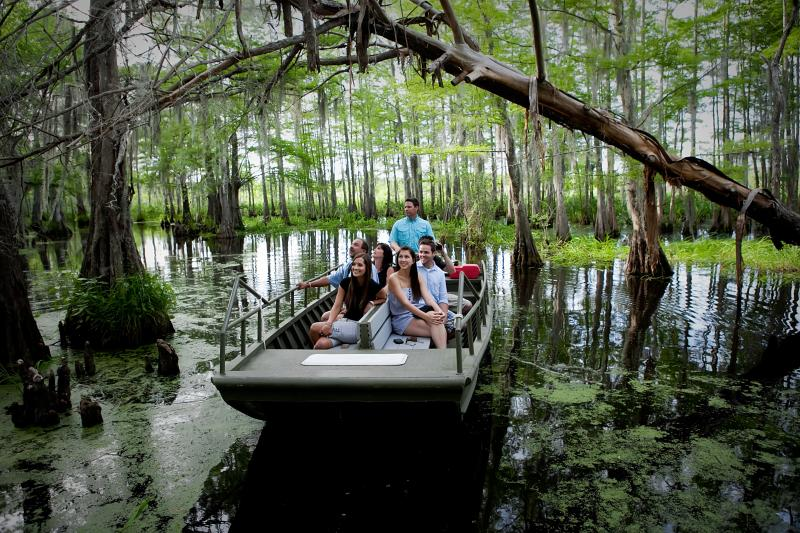 Cajun Encounters Swamp Tour - Pick Up