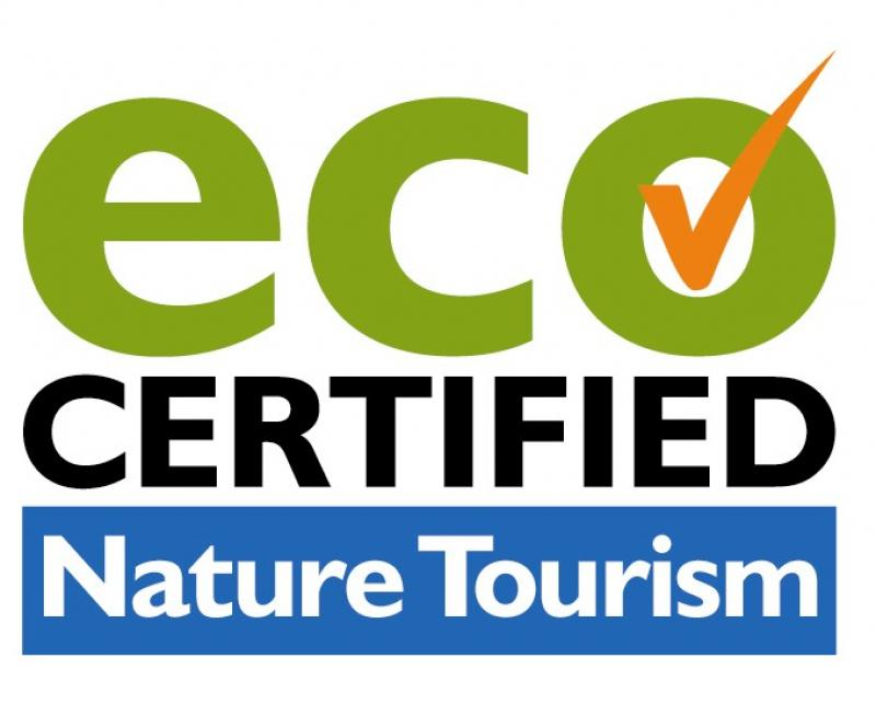 Eco Certified for nature tourism on Blue Mountains tour
