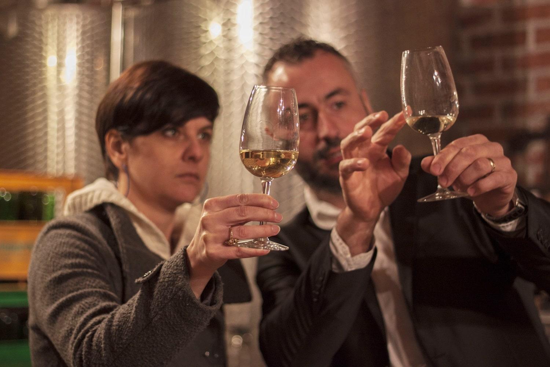 Wine tasting break in Croatia
