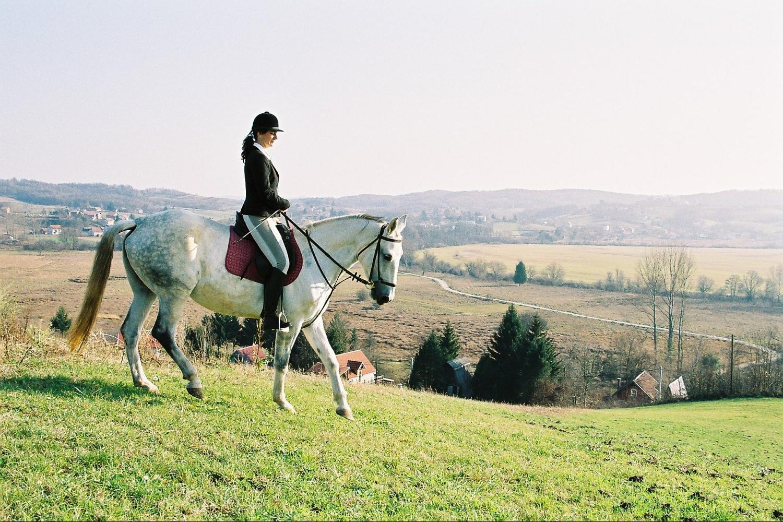 horse riding holiday Croatia