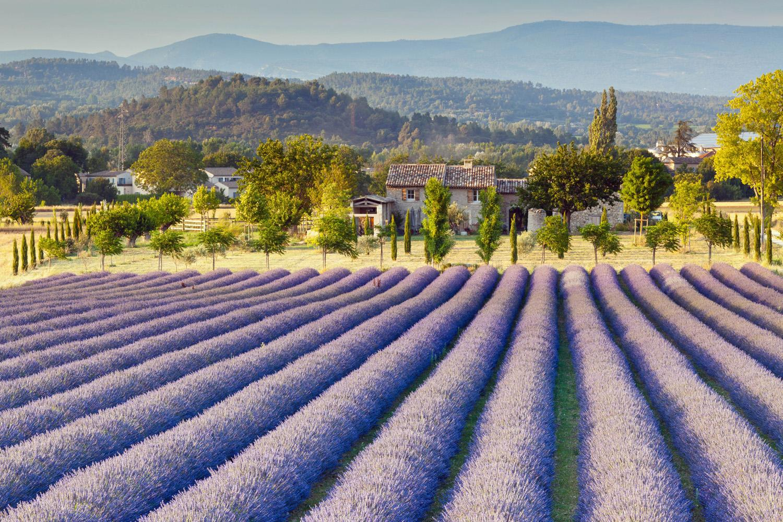 Klassische Provence: Wandern im Luberon