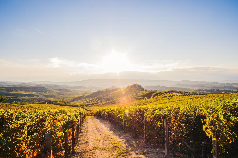Piemont: Wandern und Wein