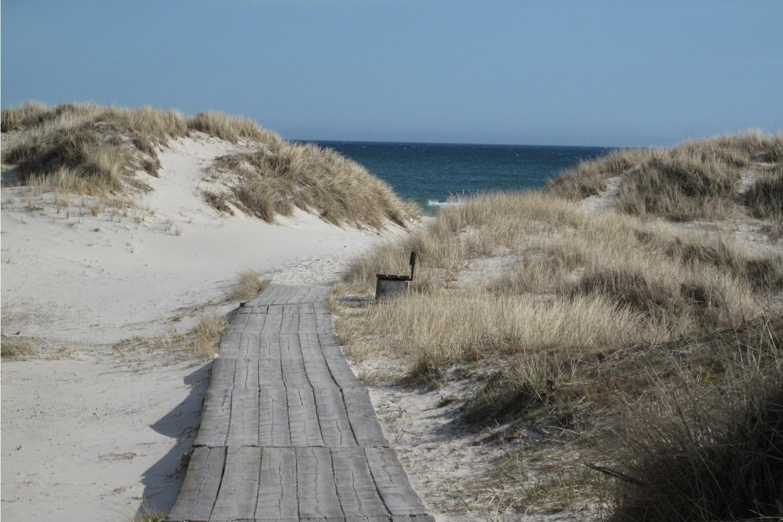 Südschweden: Küstenwandern auf dem Österlenleden