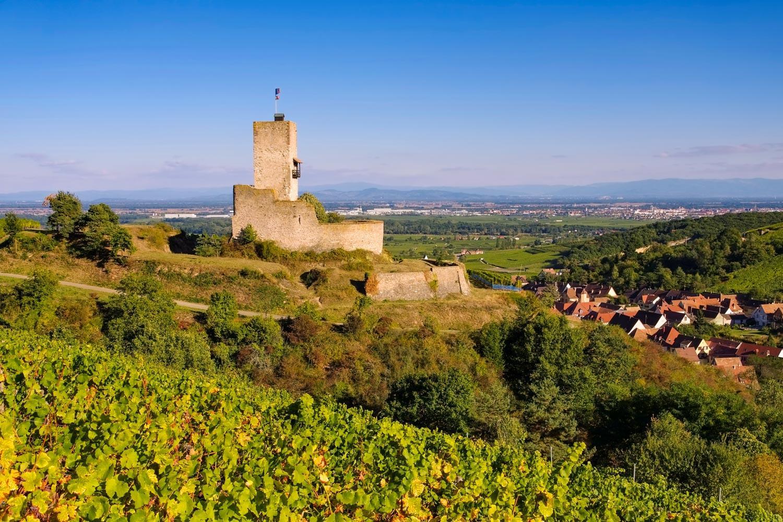 Wandern & Wein: Auf Bacchus' Spuren durchs Elsass
