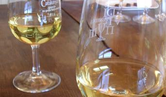 Private Wine tasting tour with tapas in Barcelona - Barcelona wine city tour white wine tasting
