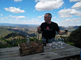 Priorat Wine Tour for wine lovers - Private - Private Wine Tour to Priorat for wine lovers - vineyard view