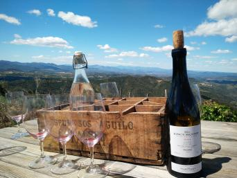 Great Wines of Priorat Private Wine Tour - Private Wine Tour to Priorat for wine lovers - Vineyard tasting