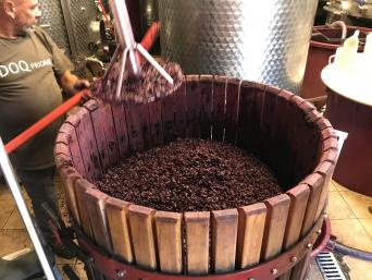 Priorat Wine Tour for wine lovers - Private - Private Wine Tour to Priorat for wine lovers - Pissage making wine
