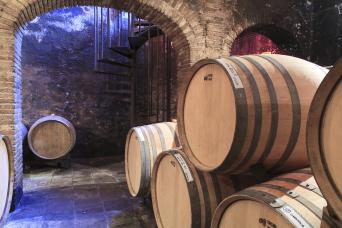 Great Wines of Priorat Private Wine Tour - Private Wine Tour to Priorat for wine lovers - Cellar Barrels