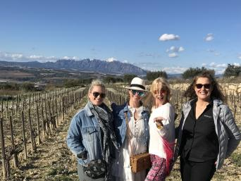 Private Wine Tour to Penedes and Sitges - Private Wine Tour to Penedes and Sitges - vineyards