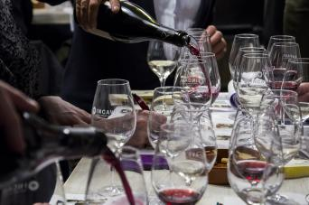 Wine tasting with an expert in Barcelona - Private - Wine tasting with an expert in Barcelona