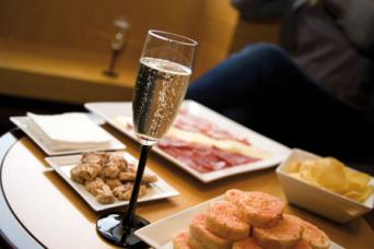 Wine and Cava Day Trip from Barcelona - Wine and Cava Day Trip from Barcelona Food & cava tasting in freixenet winery