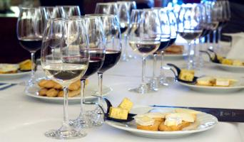 Wine and Cava Day Trip from Barcelona - Wine and Cava Day Trip from Barcelona Cheese & wine pairing in Torres