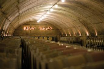 Wine and Cava Day Trip from Barcelona - Wine and Cava Day Trip from Barcelona Jean leon winery