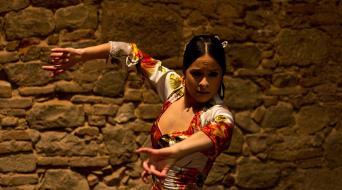 Barcelona Tapas Walking Tour with Flamenco Show - tapas-evening-walking-tour-of-barcelona Flamenco Show-dancer
