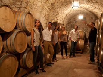 Wine, Cava and Tapas tour from Barcelona - Wine, Cava & Tapas Tour Country House