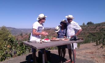 Private Priorat Wine Tour from Barcelona GROUPS - Priorat Private Wine Tour from Barcelona Tasting
