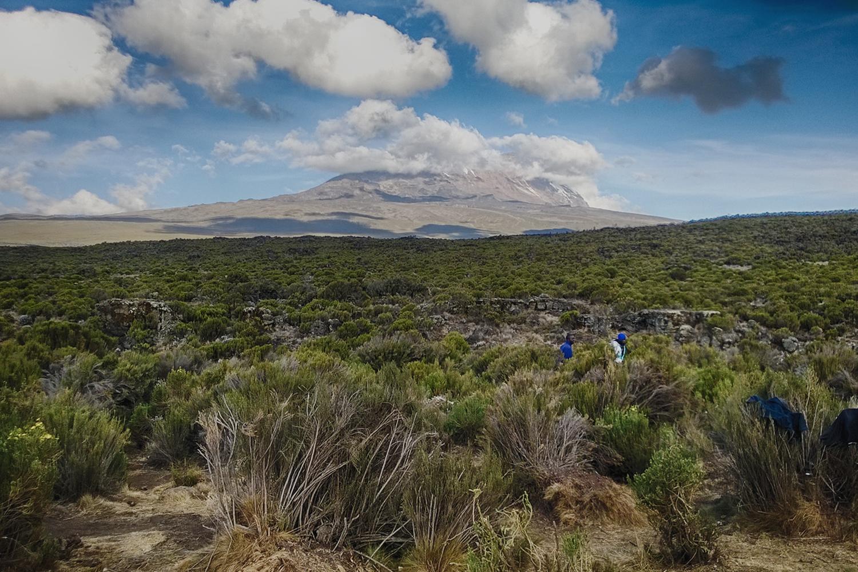 Kilimanjaro - Rongai