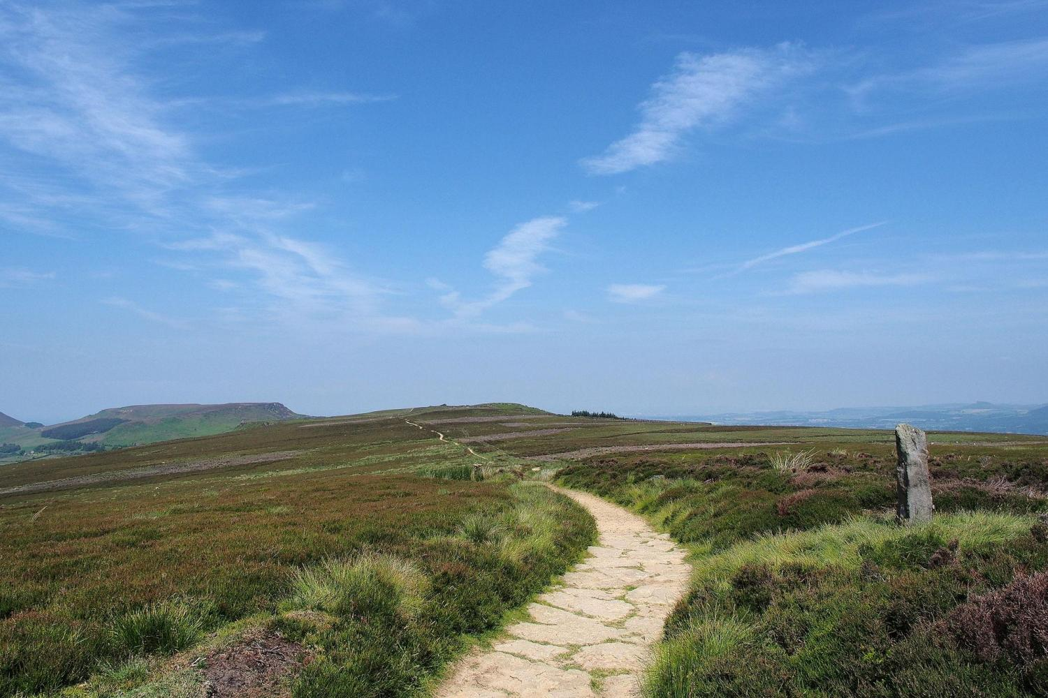 Live Moor in the North York Moors. Image by Kreuzschnabel. Licence: CC-by-SA-3.0
